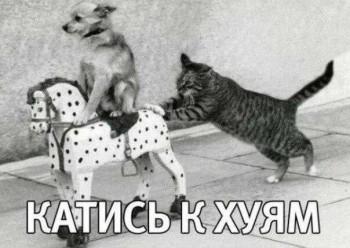 http://s8.uploads.ru/t/yWgU1.jpg