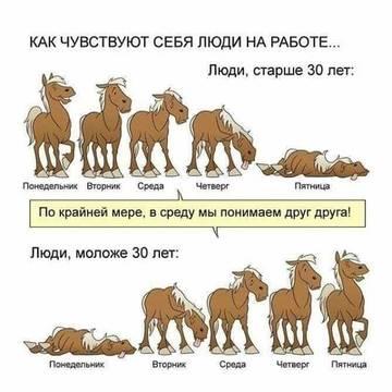 http://s8.uploads.ru/t/zZi8f.jpg
