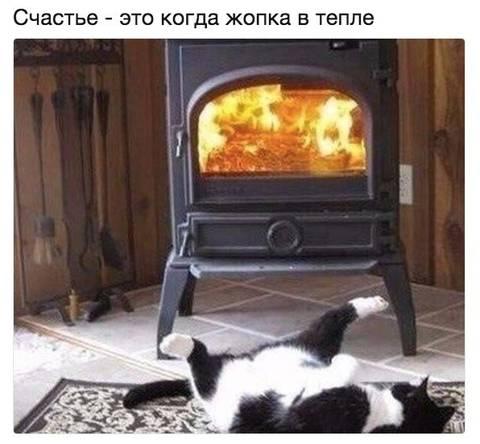 http://s8.uploads.ru/t/zcUn8.jpg