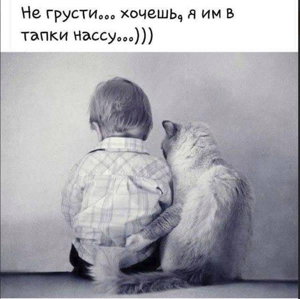 http://s8.uploads.ru/t/zgSUt.jpg