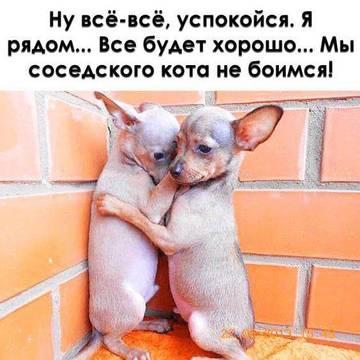http://s8.uploads.ru/t/zhuw9.jpg