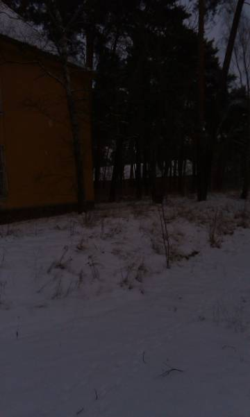http://s8.uploads.ru/t/zpw0n.jpg