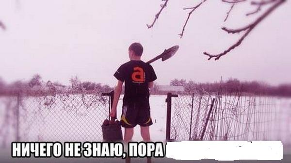 http://s8.uploads.ru/vQ9GD.jpg