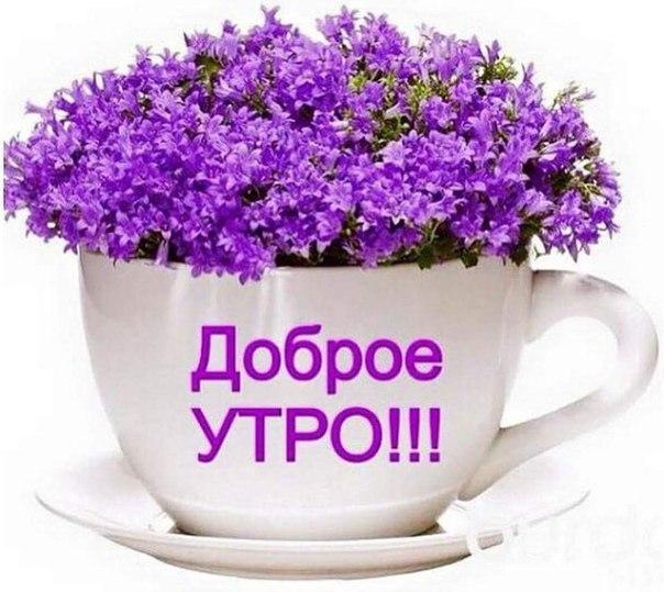 http://s8.uploads.ru/vTQFC.jpg