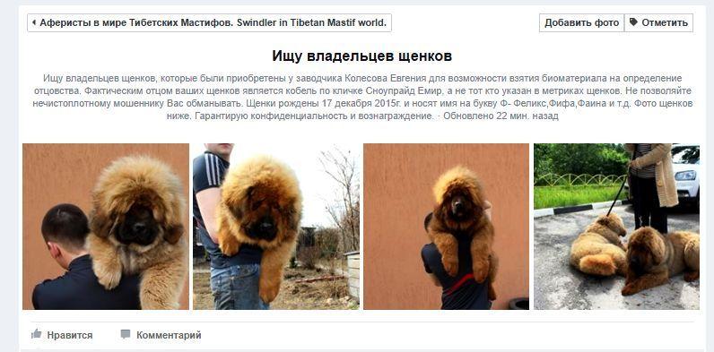 http://s8.uploads.ru/xyoPT.jpg