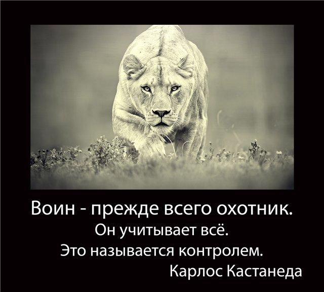 http://s8.uploads.ru/yCFR2.jpg