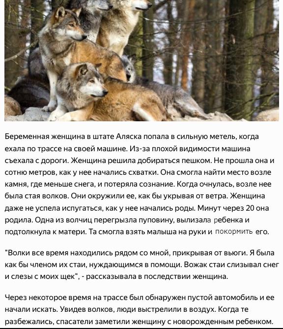 http://s8.uploads.ru/zAQPO.png