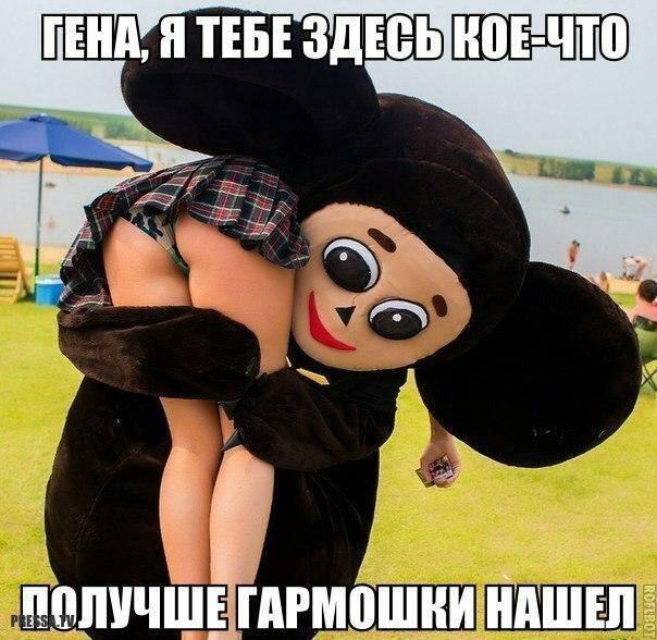 http://s8.uploads.ru/zWqlN.jpg