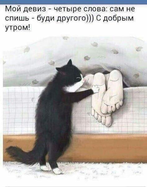 http://s8.uploads.ru/znLFQ.jpg