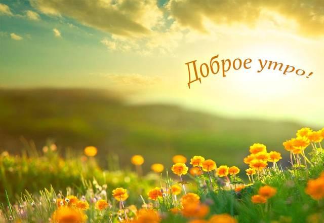 http://s8.uploads.ru/03kKf.jpg
