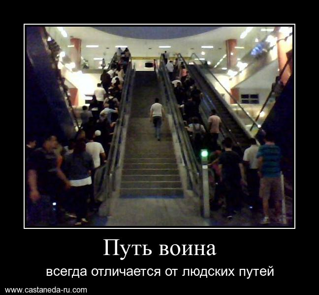 http://s8.uploads.ru/3URSE.jpg