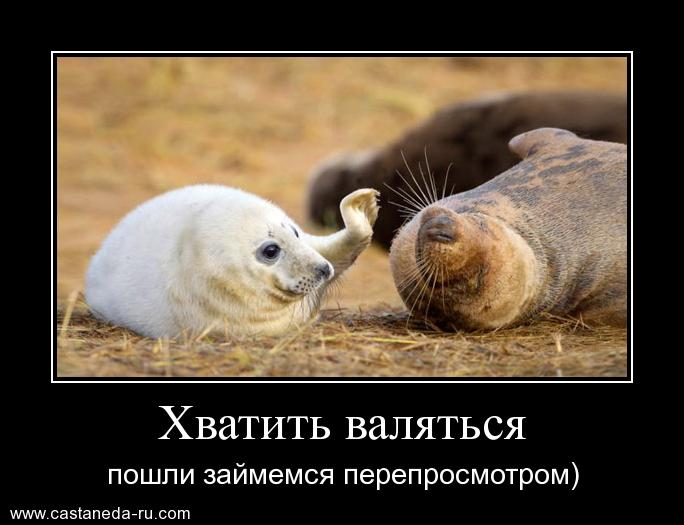 http://s8.uploads.ru/7B9H2.jpg