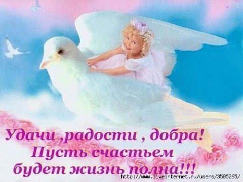 http://s8.uploads.ru/AFkQi.jpg