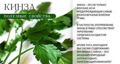 http://s8.uploads.ru/ElF1A.jpg