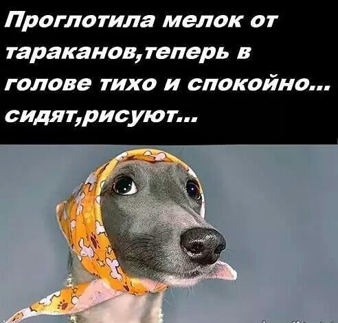 http://s8.uploads.ru/LiES1.jpg