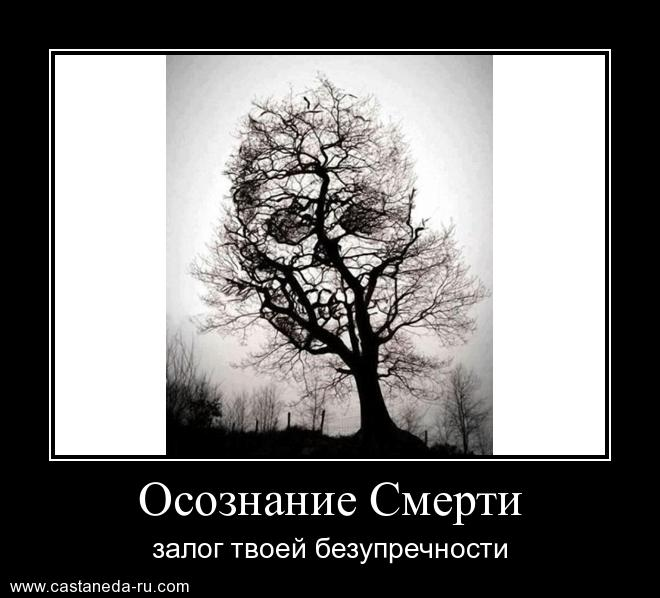 http://s8.uploads.ru/ZYwcR.jpg