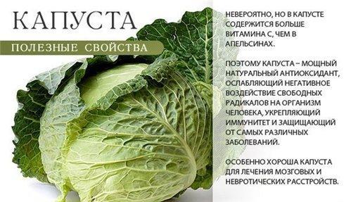 http://s8.uploads.ru/dCuSM.jpg