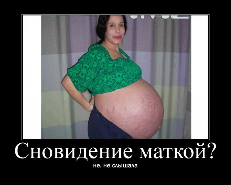 http://s8.uploads.ru/h4U6w.jpg