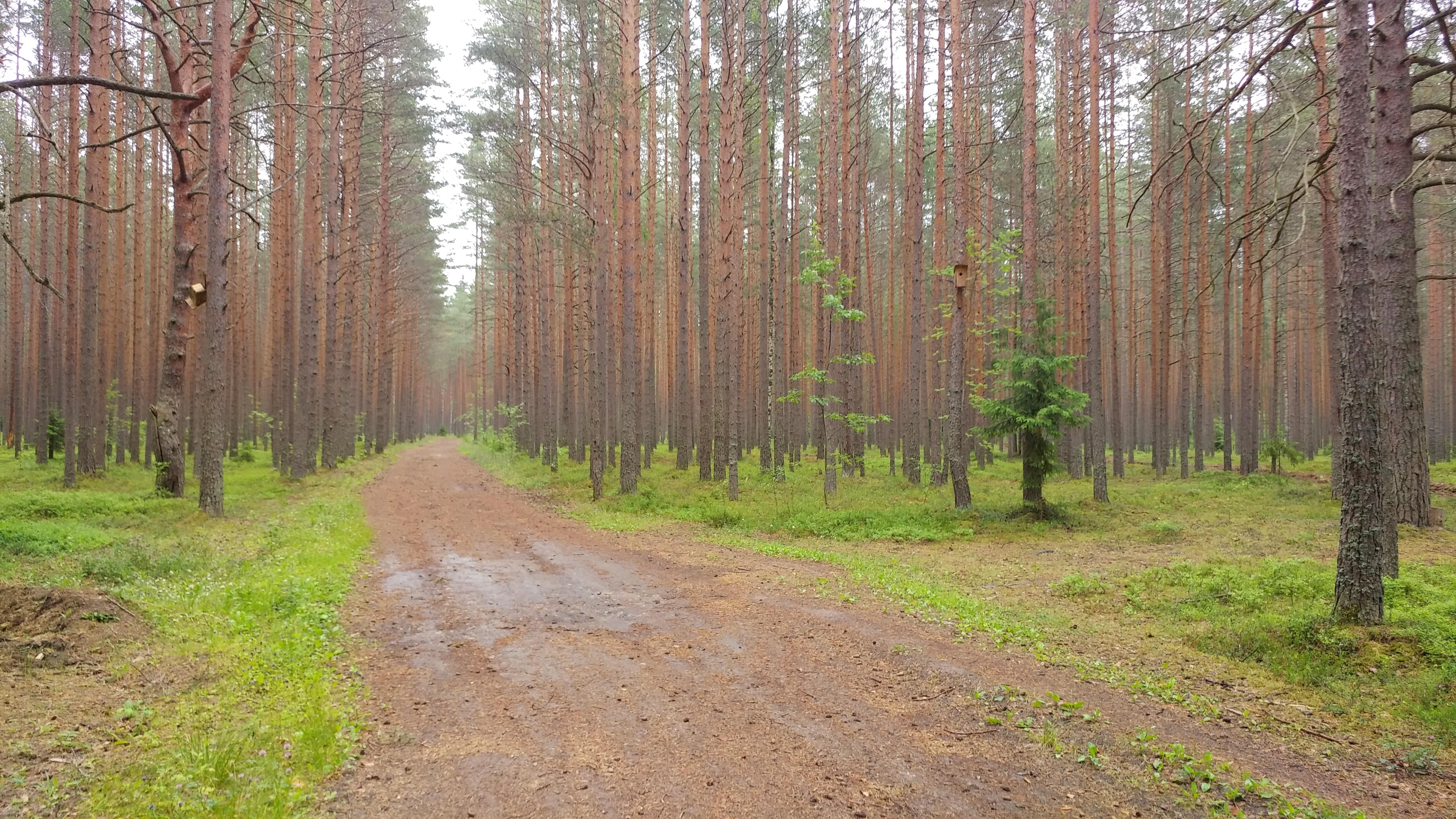 http://s8.uploads.ru/i7A42.jpg
