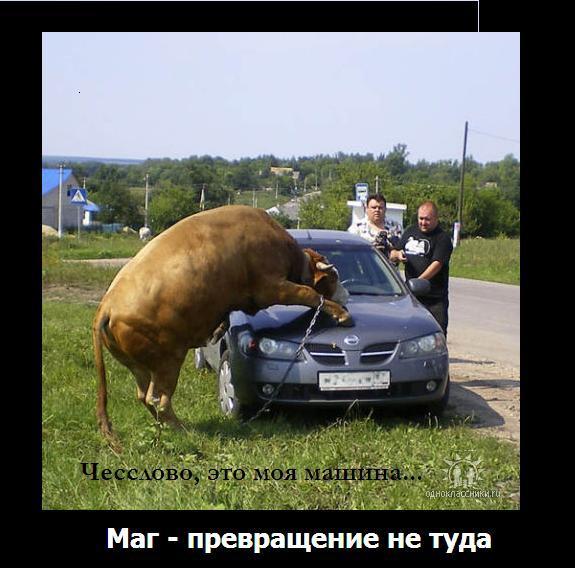 http://s8.uploads.ru/jH47c.jpg
