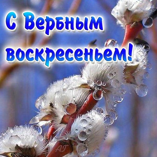http://s8.uploads.ru/ks0Rq.jpg