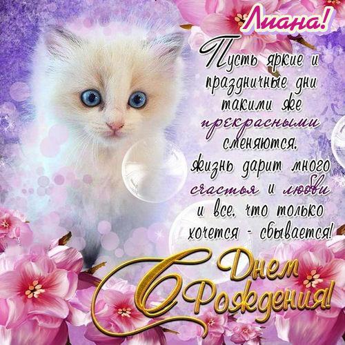 http://s8.uploads.ru/olX2n.jpg