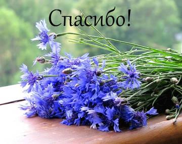 http://s8.uploads.ru/t/5y6GU.jpg