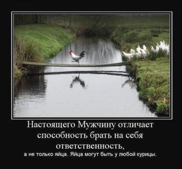 http://s8.uploads.ru/t/700gs.png