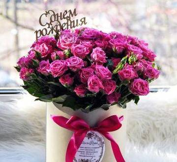 http://s8.uploads.ru/t/7MgR1.jpg