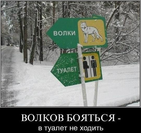 http://s8.uploads.ru/t/AJxag.jpg