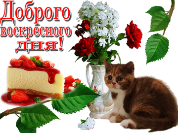 http://s8.uploads.ru/t/BihkS.png
