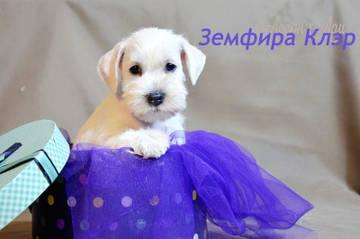 http://s8.uploads.ru/t/E9WjN.jpg
