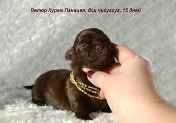 http://s8.uploads.ru/t/EZzY8.jpg