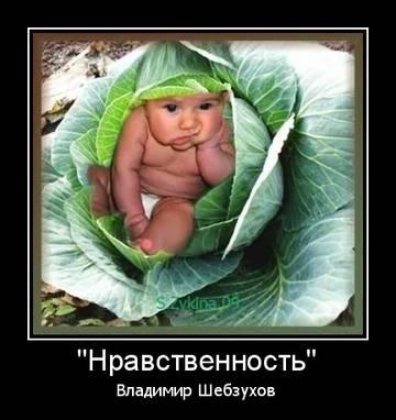 http://s8.uploads.ru/t/IZNXz.jpg