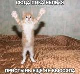 http://s8.uploads.ru/t/La4el.jpg
