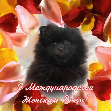http://s8.uploads.ru/t/MJVK3.jpg