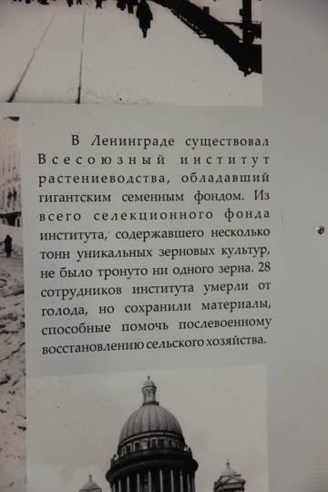 http://s8.uploads.ru/t/NIw0q.jpg
