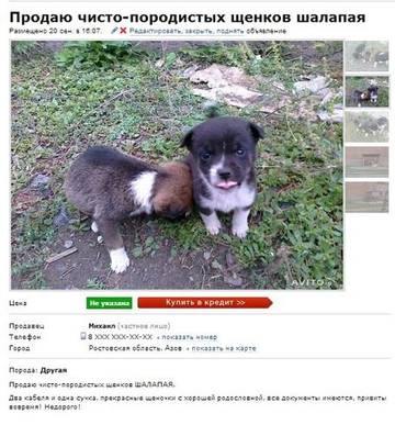 http://s8.uploads.ru/t/WnTA3.jpg
