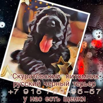 http://s8.uploads.ru/t/Y0kJh.jpg