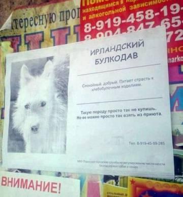 http://s8.uploads.ru/t/faDO3.jpg