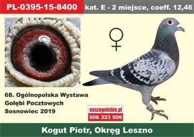 http://s8.uploads.ru/t/gdfRj.jpg