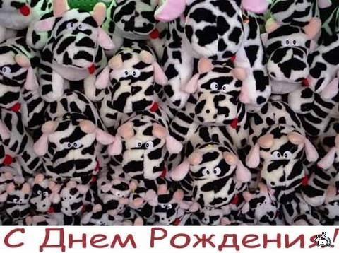 http://s8.uploads.ru/t/i860M.jpg