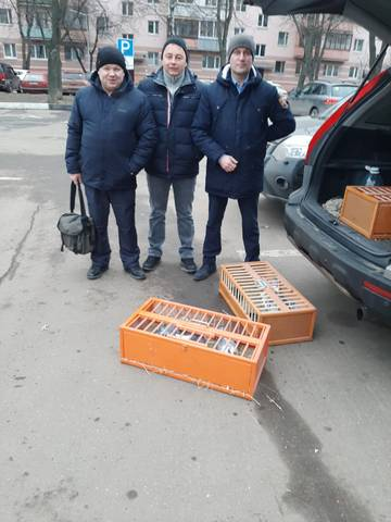 http://s8.uploads.ru/t/irbLu.jpg