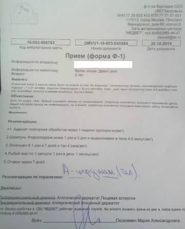 http://s8.uploads.ru/t/k62cl.jpg