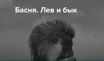 http://s8.uploads.ru/t/pkbaU.jpg