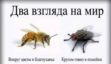 http://s8.uploads.ru/t/uU1Ht.jpg