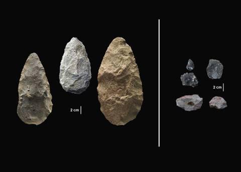 Происхождение Человека. Антропогенез.