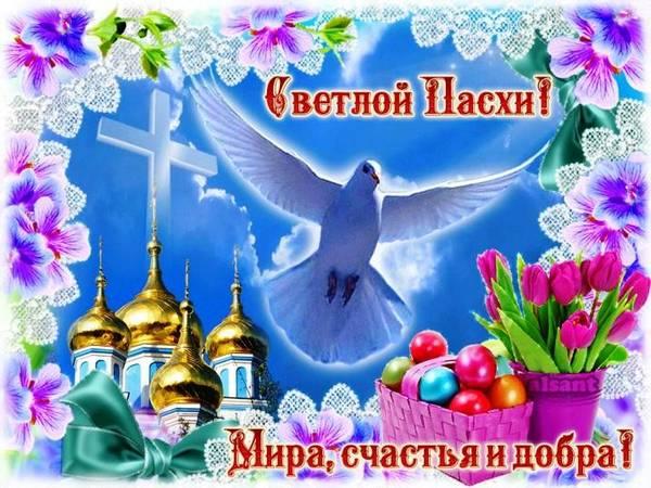 http://s8.uploads.ru/t/zM0lG.jpg