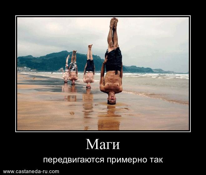 http://s8.uploads.ru/t0Cfd.jpg