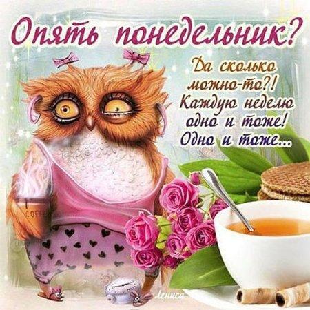 http://s8.uploads.ru/xYy2E.jpg
